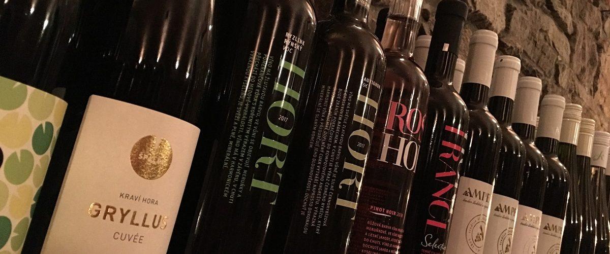 Degustace vín Hotel Ryšavý